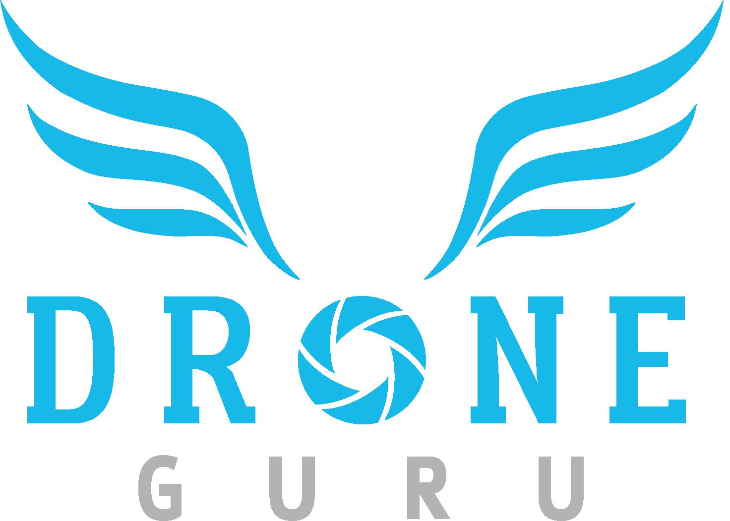 logo droneguru